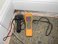 mold intrusion